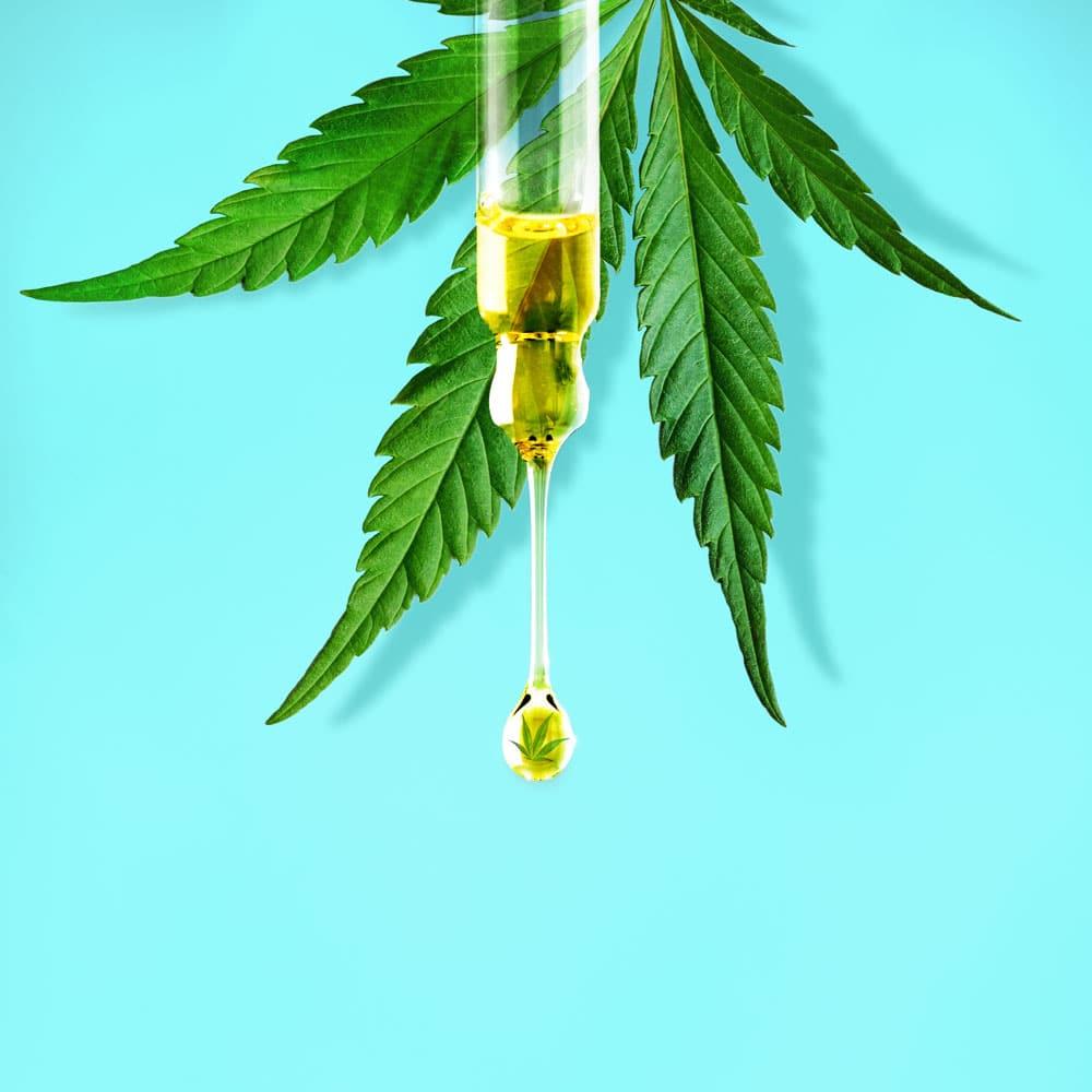 cbd oil and leaf