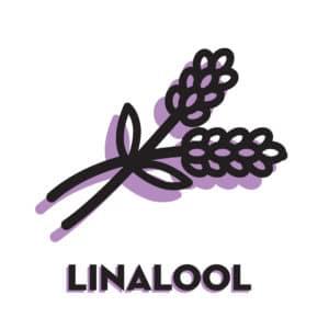 Cannabis Marijuana Linalool icon with text